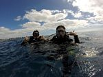 Hawaii Scuba divng 97