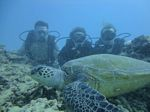 Hawaii Scuba divng 38