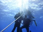 Hawaii Scuba divng 08