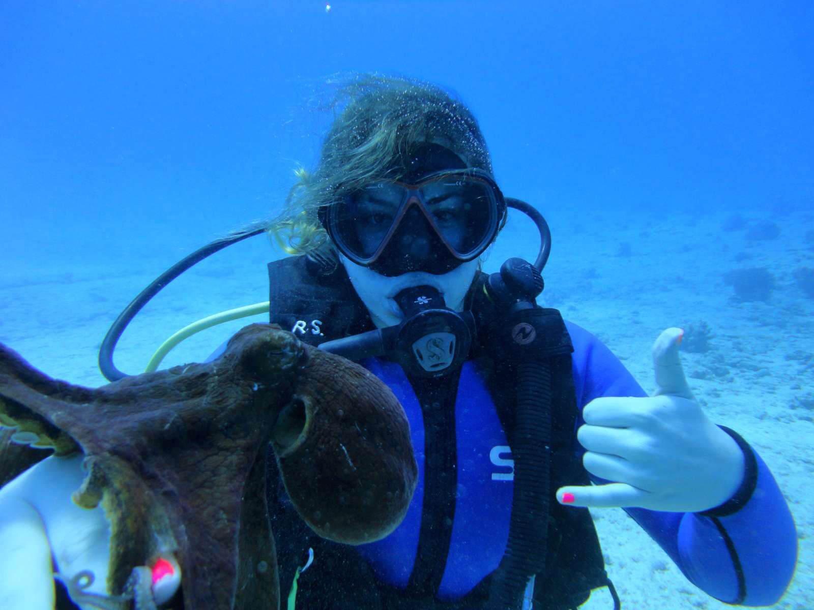Hawaii Scuba Diving Guide Dive