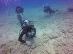 Hawaii Scuba divng 41
