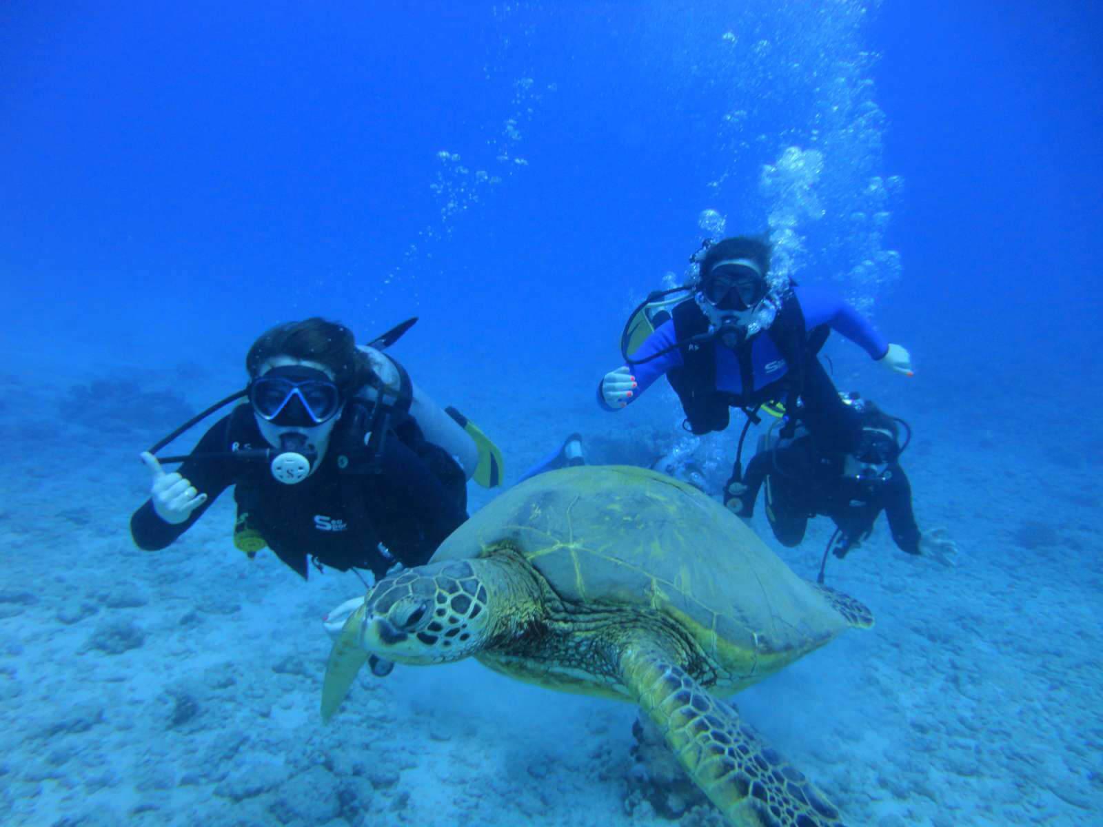 scuba diving in hawaii #0