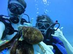 Hawaii Scuba divng 28