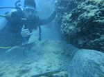 Hawaii Scuba divng 52