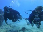 Hawaii Scuba divng 43