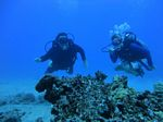 Hawaii Scuba divng 59