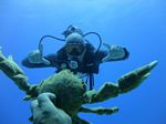 Hawaii Scuba divng 73