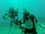 Hawaii Scuba divng 90