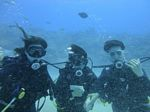 Hawaii Scuba divng 47