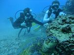 Hawaii Scuba divng 26