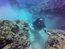 Hawaii Scuba divng 35