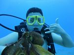 Hawaii Scuba divng 86