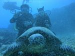Hawaii Scuba divng 82