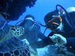 Hawaii Scuba divng 77
