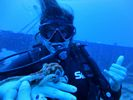 Hawaii Scuba diving 11