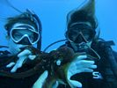Hawaii Scuba diving 37