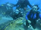 Hawaii Scuba diving 16