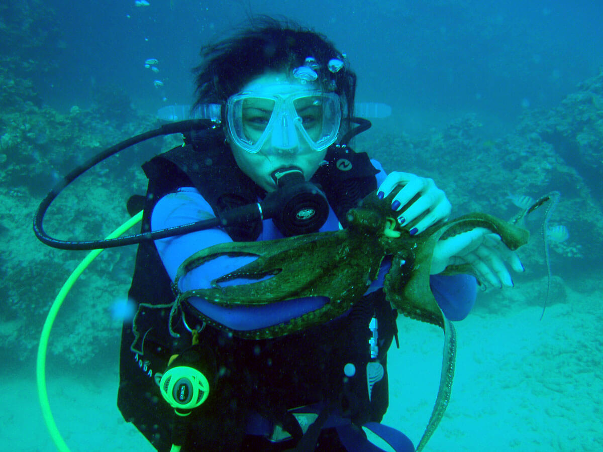 scuba diving in hawaii #1