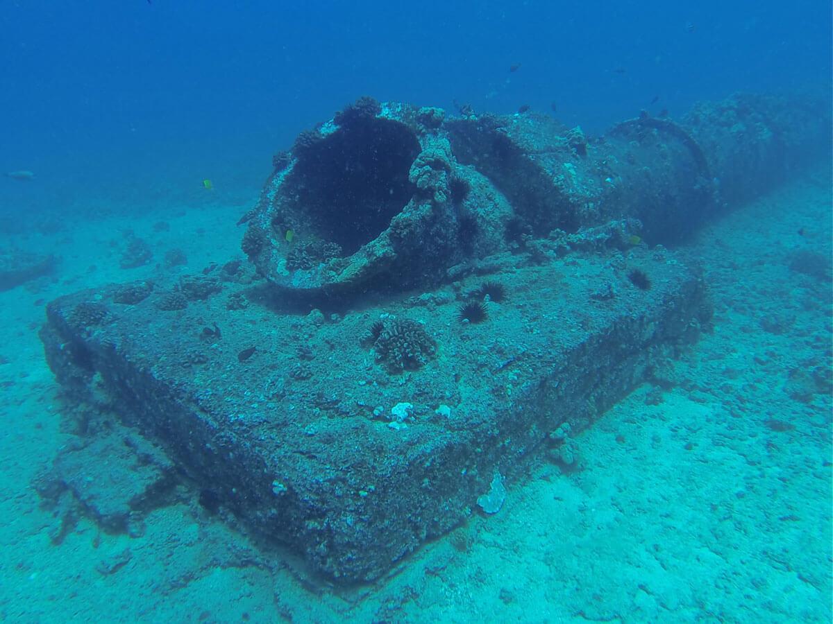Hawaii scuba diving sites dive locations - Padi dive sites ...